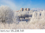Frosty day in a Russian city. Стоковое фото, фотограф Дмитрий Тищенко / Фотобанк Лори