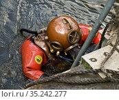 Taucher steigt die Leiter hoch Diver climbing the ladder. Стоковое фото, фотограф Zoonar.com/Renate Krafft / age Fotostock / Фотобанк Лори