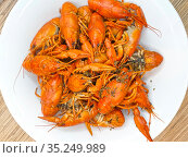 Red boiled crayfish on a plate. Russian food. Close-up. Стоковое фото, фотограф Мила Демидова / Фотобанк Лори