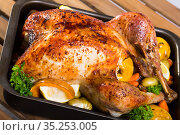 Baked turkey. Rub turkey with salt, pepper, provencal herbs, honey and balsamic. Стоковое фото, фотограф Яков Филимонов / Фотобанк Лори