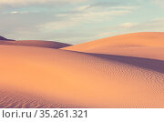 Sand dunes in California, USA. Beautiful nature landscapes travel... Стоковое фото, фотограф Zoonar.com/Galyna Andrushko / easy Fotostock / Фотобанк Лори