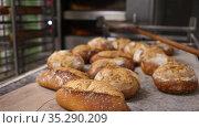 Closeup view of freshly baked hot crusty bread. Стоковое видео, видеограф Яков Филимонов / Фотобанк Лори