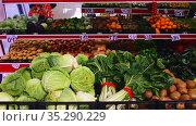 View of showcase with fresh ripe fruits and vegetables in greengrocery. Стоковое видео, видеограф Яков Филимонов / Фотобанк Лори