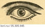 Europa, Deutschland, Hamburg, Das Auge, Teil einer Werbung : Optisches... Редакционное фото, фотограф Historisches Auge Ralf Feltz / age Fotostock / Фотобанк Лори