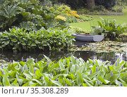 Garden pond, general garden view. Стоковое фото, фотограф Dariusz Gora / easy Fotostock / Фотобанк Лори