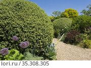 Gravel garden path, English garden. Стоковое фото, фотограф Dariusz Gora / easy Fotostock / Фотобанк Лори