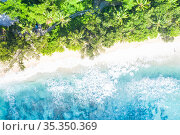 Seychelles beach Mahé Mahe island nature vacation paradise drone view... Стоковое фото, фотограф Markus Mainka / easy Fotostock / Фотобанк Лори