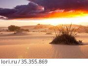 Scenic sand dunes in desert. Instagram filter. Стоковое фото, фотограф Zoonar.com/Galyna Andrushko / easy Fotostock / Фотобанк Лори