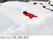 Автомобили засыпанные снегом в зимний день после сильного снегопада. Редакционное фото, фотограф E. O. / Фотобанк Лори