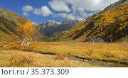 Autumn. Стоковое фото, фотограф александр жарников / Фотобанк Лори