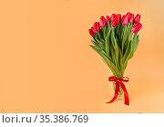Большой букет красных тюльпанов на однотонном фоне. Весеннее поздравление с 8 Марта. Свободное место для текста. Стоковое фото, фотограф Наталья Гармашева / Фотобанк Лори