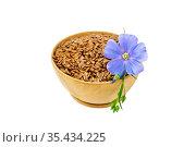 Семена коричневые льняные в чаше с цветком. Стоковое фото, фотограф Резеда Костылева / Фотобанк Лори