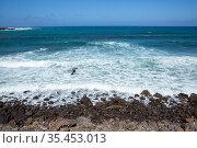 Coastal landscape, Santa Maria Island, Azores, Portugal, Atlantic Ocean. Стоковое фото, фотограф Franco Banfi / Nature Picture Library / Фотобанк Лори