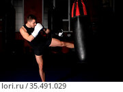 Muscular handsome kickboxing fighter giving a forceful kick during... Стоковое фото, фотограф Zoonar.com/DAVID HERRAEZ CALZADA / easy Fotostock / Фотобанк Лори