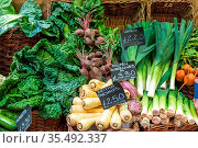 Britische Pastinaken, Porree, Wirsingkohl und anderes Gemüse zum Verkauf... Стоковое фото, фотограф Zoonar.com/elxeneize / easy Fotostock / Фотобанк Лори