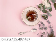 A Cup of herbal tea with sage flowers and mint leaves has a calming... Стоковое фото, фотограф Zoonar.com/Galina Tolochko / age Fotostock / Фотобанк Лори