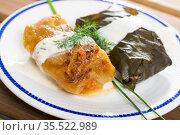Cabbage and grape rolls in leaves at plate, dish of European cuisine. Стоковое фото, фотограф Яков Филимонов / Фотобанк Лори