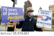 Anti-Brexit protester Steve Bray, outside the UK parliament 11/11... Редакционное фото, агентство World History Archive / Фотобанк Лори