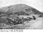 Russo-Japanese War 1904-1905:  203 Metre Hill on the day of its capture... Редакционное фото, агентство World History Archive / Фотобанк Лори