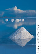Salt cones on the Salar de Uyuni, Bolivia. The Salar is the world's largest salt flat, at over 10500 square kilometers. Salt is shoveled into these cones, to be collected later. Стоковое фото, фотограф John Shaw / Nature Picture Library / Фотобанк Лори