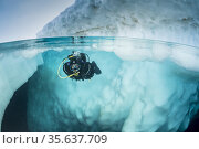 Spit image of a scuba diver diving close to an iceberg, only in springtime... Стоковое фото, фотограф Franco Banfi / age Fotostock / Фотобанк Лори