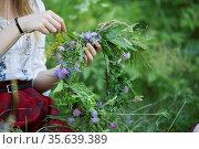 Wreath for the holiday Kupala. Hands weave a wreath of wild flowers... Стоковое фото, фотограф Zoonar.com/Svetlana / age Fotostock / Фотобанк Лори