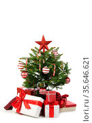 Christmas tree and gifts isolated on white background. Стоковое фото, фотограф Zoonar.com/Ivan Mikhaylov / easy Fotostock / Фотобанк Лори