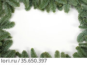 Christmas border arranged with fresh fir branches isolated on white... Стоковое фото, фотограф Zoonar.com/Ivan Mikhaylov / easy Fotostock / Фотобанк Лори