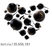 Black turnips in the shape of a heart on a white background. Стоковое фото, фотограф Zoonar.com/Aleksey Butenkov / easy Fotostock / Фотобанк Лори
