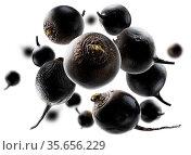Black turnips levitate on a white background. Стоковое фото, фотограф Zoonar.com/Aleksey Butenkov / easy Fotostock / Фотобанк Лори