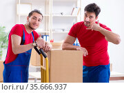Two contractor employees moving personal belongings. Стоковое фото, фотограф Elnur / Фотобанк Лори