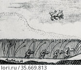 Aurora Borealis resmbling reapers in the sky, observed in 1660. Редакционное фото, агентство World History Archive / Фотобанк Лори
