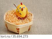 Цыплёнок из крашеного яйца. Стоковое фото, фотограф Dmitry29 / Фотобанк Лори