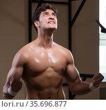 Ripped muscular man in gym doing sports. Стоковое фото, фотограф Elnur / Фотобанк Лори