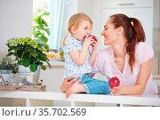 Mutter und Tochter essen zusammen je einen Apfel in der Küche. Стоковое фото, фотограф Zoonar.com/Robert Kneschke / age Fotostock / Фотобанк Лори
