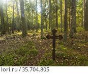 Poland. Podlaski region. Eastern Poland. The remains of an ewangelical... Стоковое фото, фотограф Piotr Ciesla / age Fotostock / Фотобанк Лори