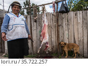 Local woman butchering sheep, Chimborazo Province, Andes, Ecuador. July 2016. Стоковое фото, фотограф Pete Oxford / Nature Picture Library / Фотобанк Лори