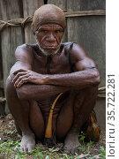 Dani tribe man with penis gourd / koteka. Budaya village, Suroba, Trikora Mountains, West Papua, Indonesia. October 2020. Стоковое фото, фотограф Pete Oxford / Nature Picture Library / Фотобанк Лори