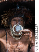 Dani tribe man with traditional headress and nose septum piercing, Budaya village, Suroba, Trikora Mountains, West Papua, Indonesia. October 2020. Стоковое фото, фотограф Pete Oxford / Nature Picture Library / Фотобанк Лори