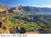 Stepped terraces in Colca Canyon in Peru. It is one of the deepest... Стоковое фото, фотограф Zoonar.com/Don Mammoser / age Fotostock / Фотобанк Лори