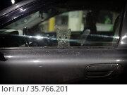 Морда кота в автомобиле. Редакционное фото, фотограф Дмитрий Неумоин / Фотобанк Лори