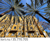 Yellow house with green palms and bare trees in front. Стоковое фото, фотограф Данил Руденко / Фотобанк Лори