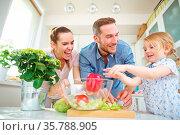 Kind in der Familie hilft beim Salat machen in der Küche. Стоковое фото, фотограф Zoonar.com/Robert Kneschke / age Fotostock / Фотобанк Лори