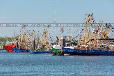 Shrimp fishing boats in Dutch harbor Lauwersoog