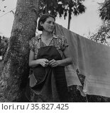 Wife of packinghouse worker, migrant from Missouri said We have never lived like hogs before but we sure does now, it's no different from hog livvin. Canal Point, Florida 19390101. Редакционное фото, агентство World History Archive / Фотобанк Лори