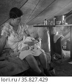 Young migrant mother with six weeks old baby born in a hospital with aid of Farm Security Administration (FSA) medical and association for migratory workers. 19390101. Редакционное фото, агентство World History Archive / Фотобанк Лори