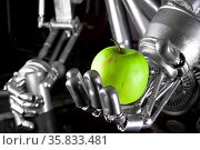 Robot hand holding green apple. Стоковое фото, фотограф Zoonar.com/Oliver Sved / age Fotostock / Фотобанк Лори