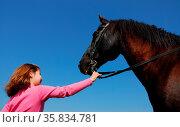 Young girl and her best friend black stallion. Стоковое фото, фотограф Zoonar.com/BONZAMI Emmanuelle / age Fotostock / Фотобанк Лори