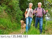 Glückliches Paar Senioren mit Hund beim Wandern mit Hund. Стоковое фото, фотограф Zoonar.com/Robert Kneschke / age Fotostock / Фотобанк Лори