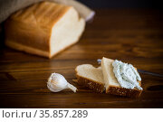 homemade salted curd spread with herbs and garlic. Стоковое фото, фотограф Peredniankina / Фотобанк Лори